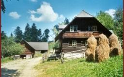 Plenznerhütte und Wassermühle, Josef Wagner